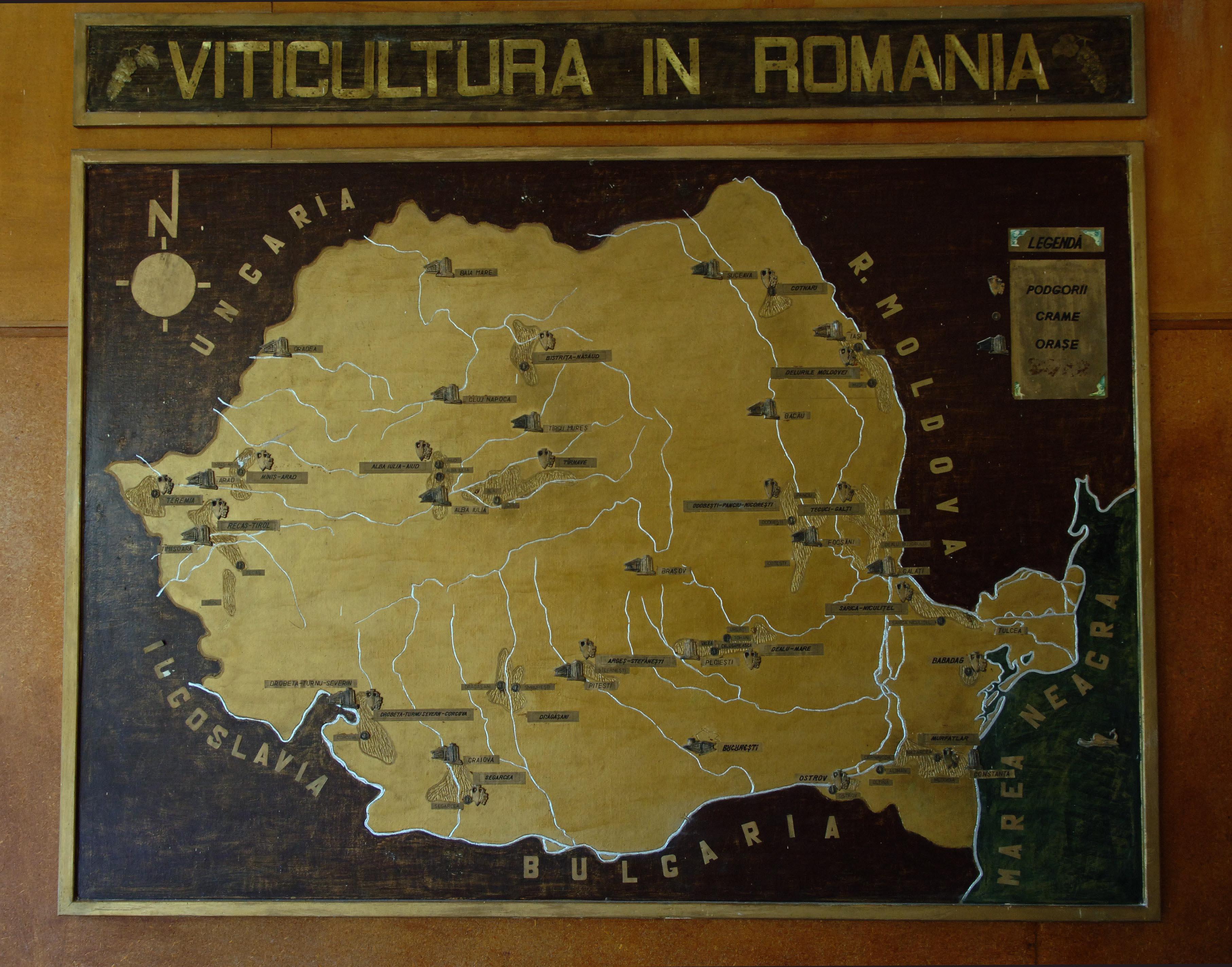 Romania In Vie