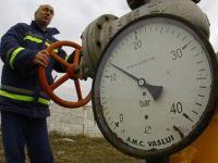 """Guvernul respinge """"categoric"""" ideea liberalizarii pretului la gaze"""