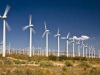 Electrica estimeaza ca in toamna va obtine avizele pentru parcuri eoliene de 160 mil. euro