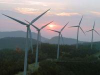 Parcul eolian Cernavoda ar putea primi 56,4 mil. euro de la BERD