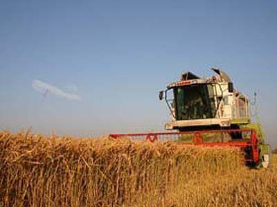 Reuters: Taxarea terenurilor necultivate, salvarea agriculturii romanesti