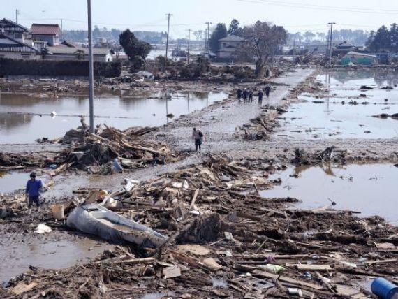 Dezastrul de dupa cutremur. Urmarile tragediei care a lovit Japonia