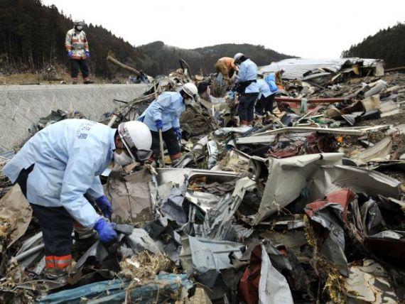 Pagube de 235 mld. dolari, bilantul dezastrului din Japonia. Reconstructia va dura 5 ani