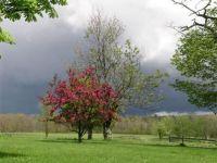 Vremea extremelor in Romania. Prognoza pentru aprilie, mai si iunie