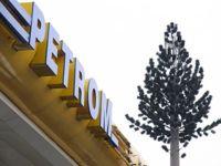 Deputatii PDL vor referendum pentru nationalizarea Petrom