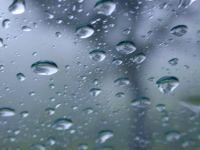 Ploi cu soare. Prognoza meteo pentru lunile aprilie si mai VIDEO