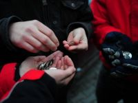 Un sfert din veniturile romanilor provin din ajutoare si prestatii sociale