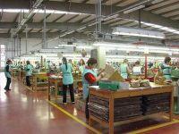 Romania la export: japonezele se demachiaza cu lapte Doina, frantuzoaicele se incalta cu pantofi Clujana