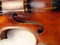 15,9 milioane de dolari pentru o vioara Stradivarius. Afla unde merg banii