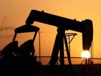 Pretul petrolului, afectat de criza din Europa