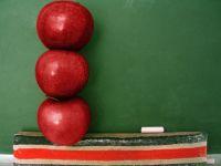"""Programul """"mere in scoli"""", valabil de la 31 octombrie. Cat cheltuieste statul pentru fructele scolarilor"""
