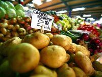 20% din cartofii de la noi, importati din tari care ii arunca. De ce sa nu cumparati cartofi gigant VIDEO