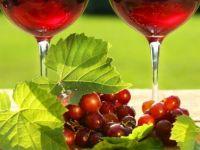 Productie-record de vin in 2011. Cati bani vor cheltui romanii pe vin