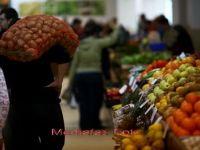 INS: Banatul si Sud-Estul tarii, singurele regiuni in care productia agricola a crescut in 2010