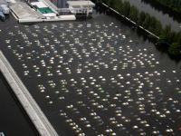 Europa Centrala, sub ape. 6 morti si sute de persoane evacuate