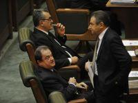 PDL dezgroapa fosti ministri pentru sefia Senatului. Udrea ii propune pe Blaga si Berceanu