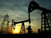 Guvernele UE vor sa interzica importurile de petrol din Iran