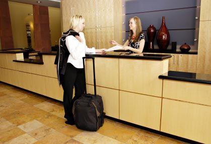 Udrea vrea sistem Big Brother in pensiuni si hoteluri. Turistii vor fi reperati oriunde, in orice moment