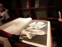 """Un exemplar al cartii """"Birds of America"""", cu desene realizate manual, a fost vandut cu 7,9 mil. dolari"""