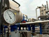 """Consumul de gaze, la record istoric. Secretarul de stat in Ministerul Economiei: """"Nu se impune declansarea situatiei de urgenta"""""""