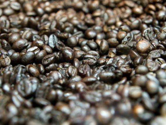 Doncaf eacute; a inregistrat anul trecut vanzari de 50 de milioane de euro