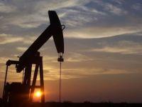 Comoara din Pancota. Un zacamant petrolier estimat la un miliard euro intra in exploatare in acest an