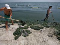 """Ministrul Turismului: """"Nu prea ai unde sa te distrezi pe litoralul Romaniei"""""""