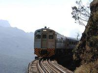 Trenuri romanesti in jungla amazoniana. Brazilienii dau 100 mil. euro pentru vagoane de lux produse la Arad