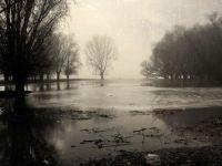 Delta Dunarii va fi declarata zona defavorizata. 70% dintre locuitori nu au acces la apa potabila