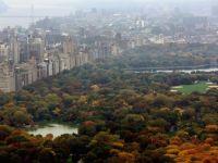 Cea mai mare donatie din istorie. Miliardarul John Paulson da 100 de mil. dolari pentru intretinerea Central Park