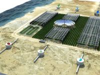 Desertul verde. Proiectul revolutionar al Qatar-ului. GALERIE FOTO
