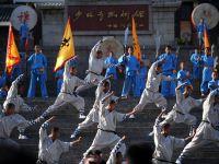 Romania a obtinut 10 medalii, dintre care una de aur, la Campionatul Mondial de Wushu