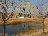 Pretul petrolului incheie anul cu o scadere de 8%, prima din 2008