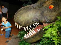 """Jurassic Park 4"" se lanseaza in iunie 2014"
