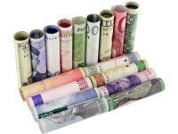 Coface estimeaza pentru acest an un curs de 4,5-4,55 lei/euro