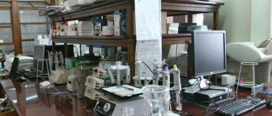 Contabila sefa a Spitalului  Victor Babes  din Capitala, arestata pentru delapidare si fals