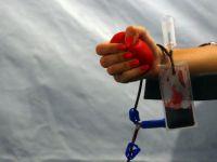 Decizie salvatoare. Romania ar putea importa sange din tarile UE