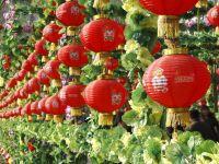 Asia a intrat in Anul Sarpelui. Noul An aduce austeritate in China