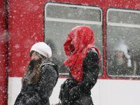 Cod galben de ninsoare in Arges, Dambovita, Prahova si Buzau