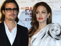 Angelina Jolie si Brad Pitt se lanseaza in industria vinurilor