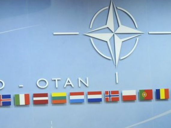 NATO da startul la internshipuri platite. Ce candidati se cauta