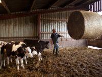 Activitatea a 32 de automate de lapte alimentate de la ferme, suspendata