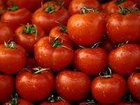 Calugarii de pe muntele Athos se hranesc cu legume romanesti. Afacerile bio, mai aproape de Dumnezeu