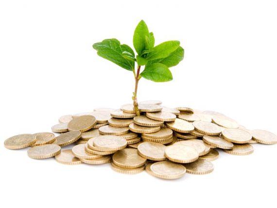 Tinerii pot depune de luni planuri de afaceri, pentru a primi finantare de 10.000 euro de la stat