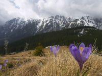 Salvamontistii sfatuiesc turistii sa nu urce pe traseele din Masivul Bucegi