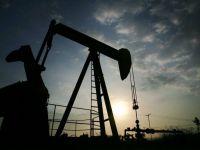 Gazprom si MOL vor sa infiinteze o companie mixta in Romania pentru extractia de petrol