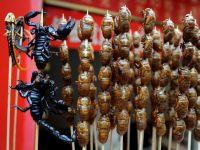 Insectele, solutia pentru o lume in care tot mai multi oameni sufera de foame
