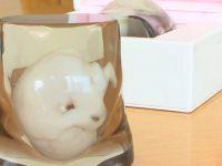 Cele mai ciudate lucruri realizate cu ajutorul imprimantei 3D