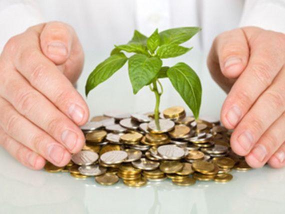 Start-up-urile de ieri, brandurile de astazi. Investitorii sfatuiesc antreprenorii sa caute finantare pentru ideile lor de afaceri