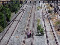 Grecia, paralizata, marti, de greva functionarilor publici. Transportul public nu functioneaza